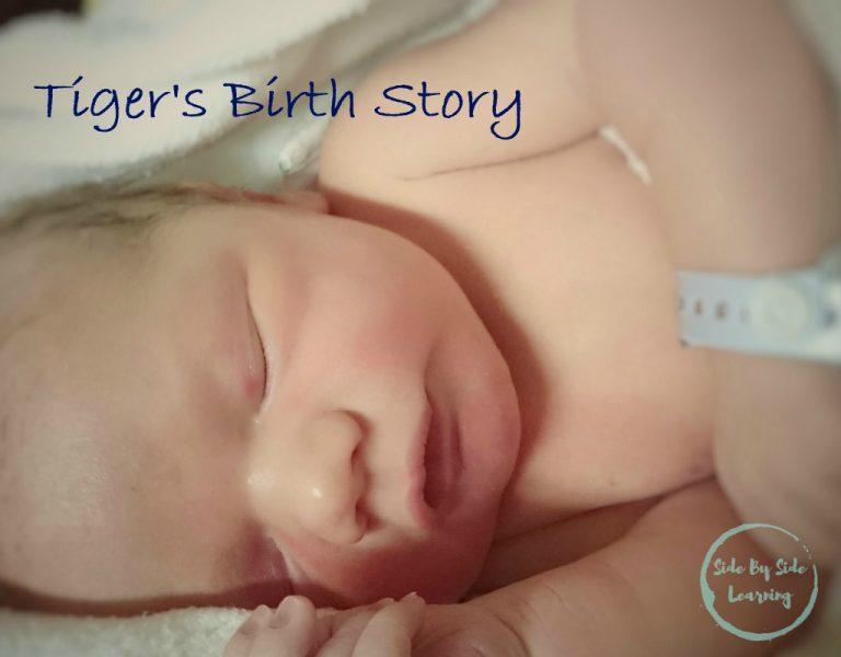 Tiger's Birth Story