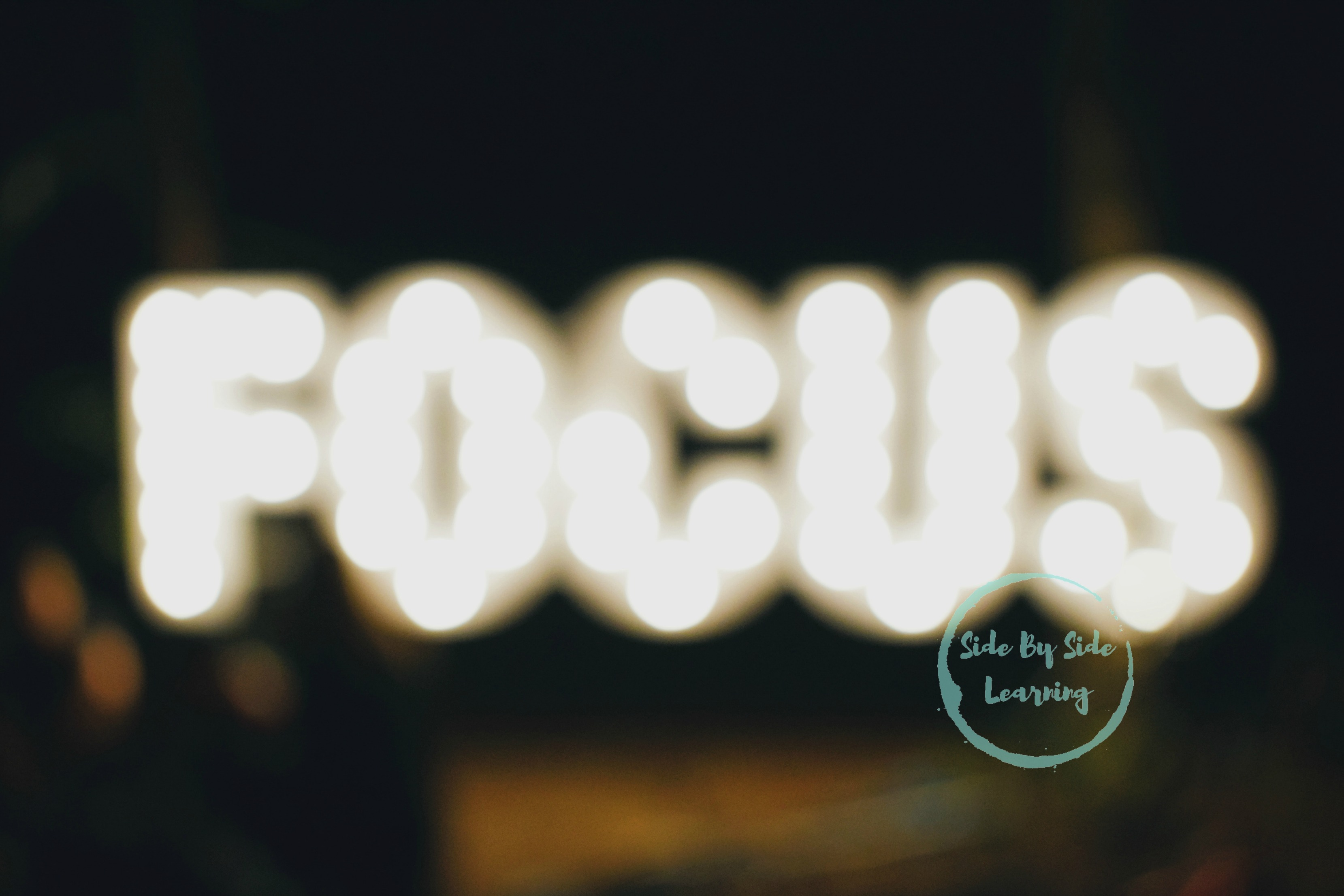Focus Social Media Fast