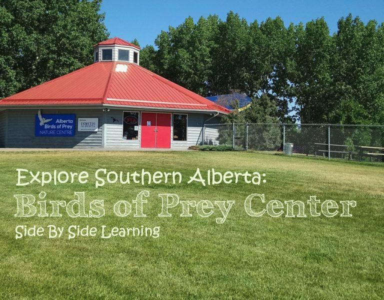 Explore Southern Alberta: Birds of Prey Center