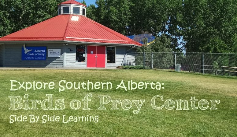 Explore Southern Alberta: Birds of Prey Center