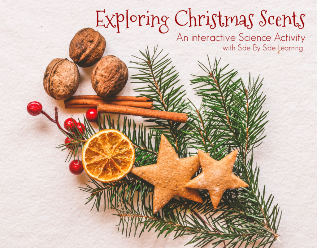 Exploring Christmas Scents