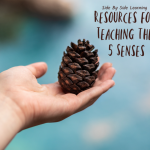 Resources for Teaching the 5 Senses