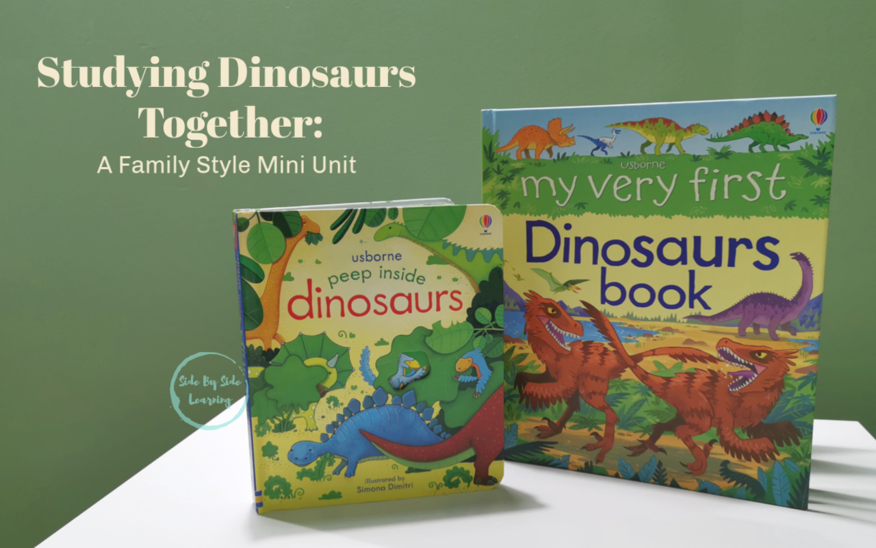 Studying Dinosaurs Together  A family Style Mini Unit