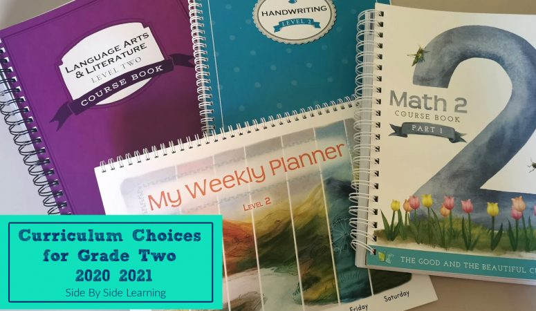 Grade Two Homeschool Curriculum Choices 2020-2021
