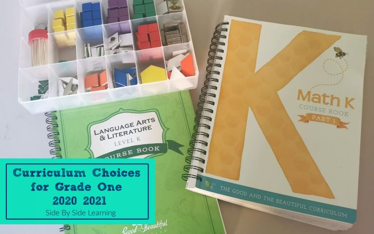 Grade One Homeschool Curriculum Choices 2020-2021