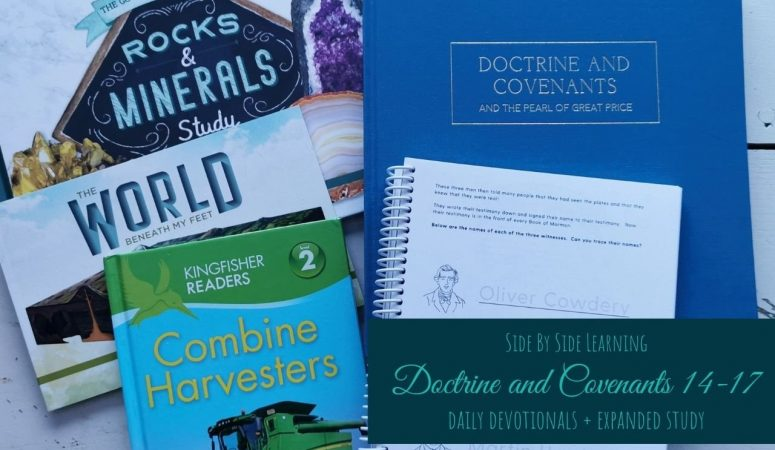 Doctrine and Covenants 14-17 Expanded Study